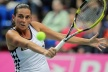 Russia qualified for the finals of Fed Cup