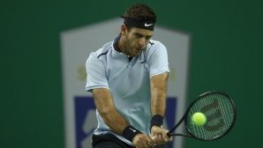 Del Potro turned Zverev to Shanghai